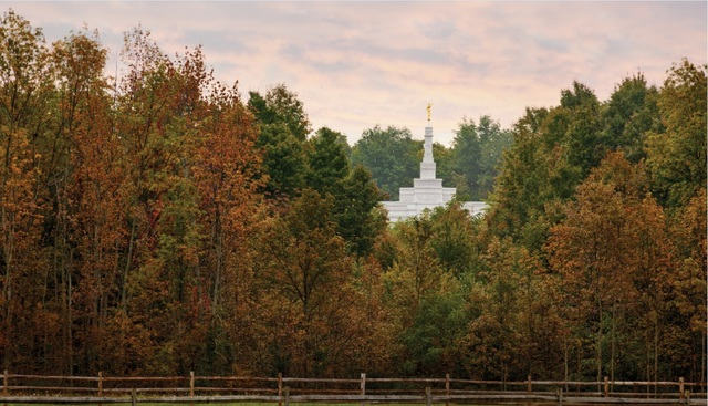I15 Exquisite Images of Temples in Fall