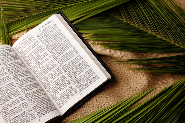 What Is The Hosanna Shout And Why Do We Do It Lds Living