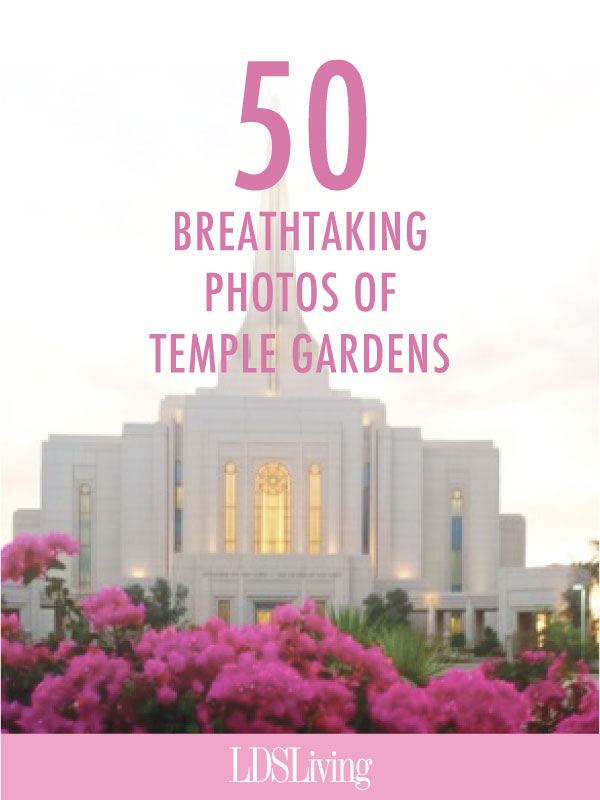 If you need a brief escape, take some time to view these stunning pictures of temple gardens that will help you feel a bit of the serenity of the Lord's holy house and the wonderment of God's beautiful creations.