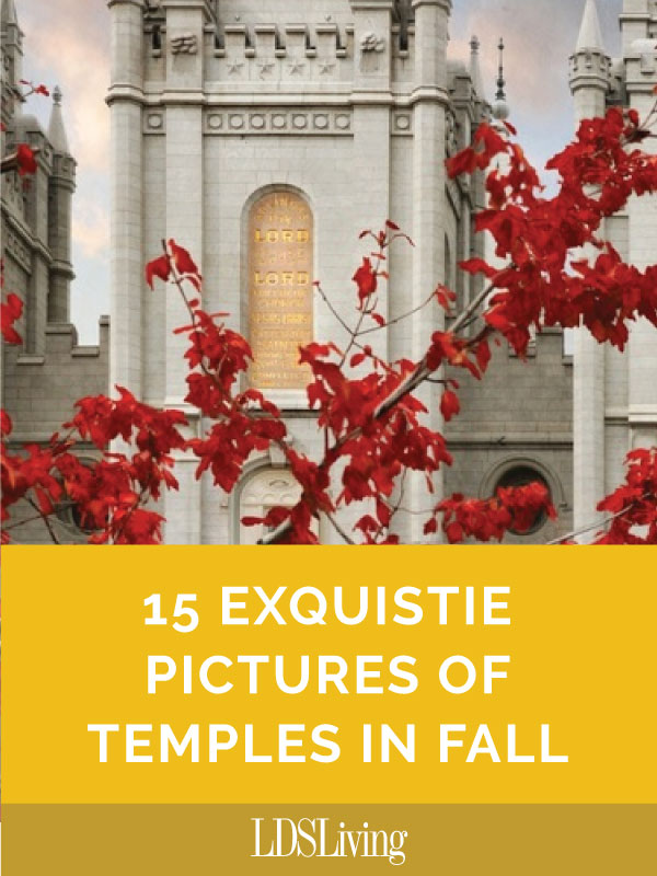 In celebration of this wonderful time of year and our Heavenly Father's precious temples, we've compiled this stunning photo gallery of temples in fall.