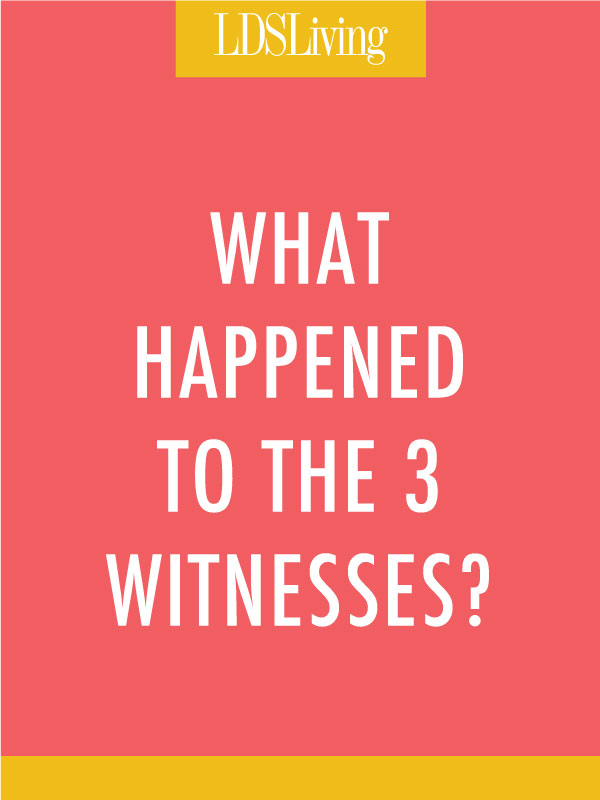 We've all read, or at least skimmed the testimony of the three witnesses at the beginning of the Book of Mormon, but what is the story behind these men and their testimonies? What happened after they signed their names, confirming that the Book of Mormon was true?